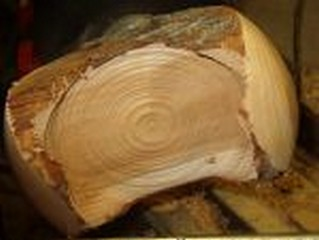 woodturning big wing image